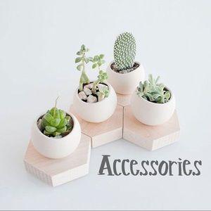 Accessories - • Accessories •
